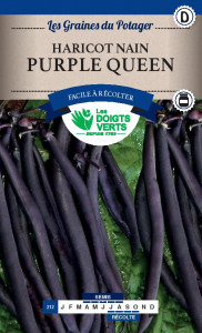 HARICOT NAIN Purple Queen / 250 g