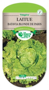 LAITUE BATAVIA blonde de Paris