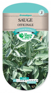 SAUGE Officinale