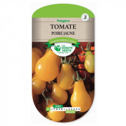 TOMATE Poire Jaune Yellow Pearsh